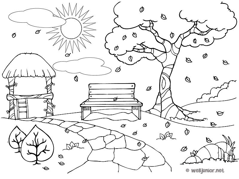 Parc A L Automne Coloriage Nature Gratuit Sur Webjunior