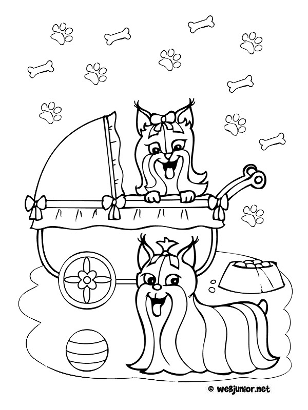 Chiots yorkshire coloriage animaux gratuit sur webjunior - Dessin de chiot ...