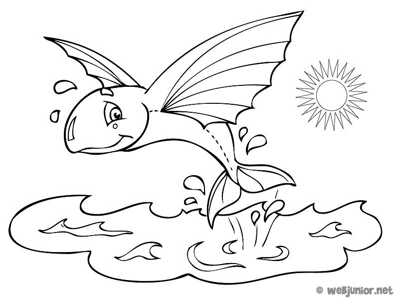 Poisson volant coloriage animaux gratuit sur webjunior - Dessin volant ...