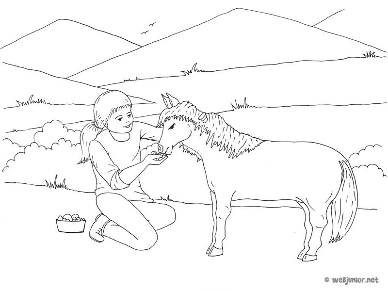 Coloriage Fille Poney.A La Ferme Le Poney Coloriage Occasions Gratuit Sur Webjunior