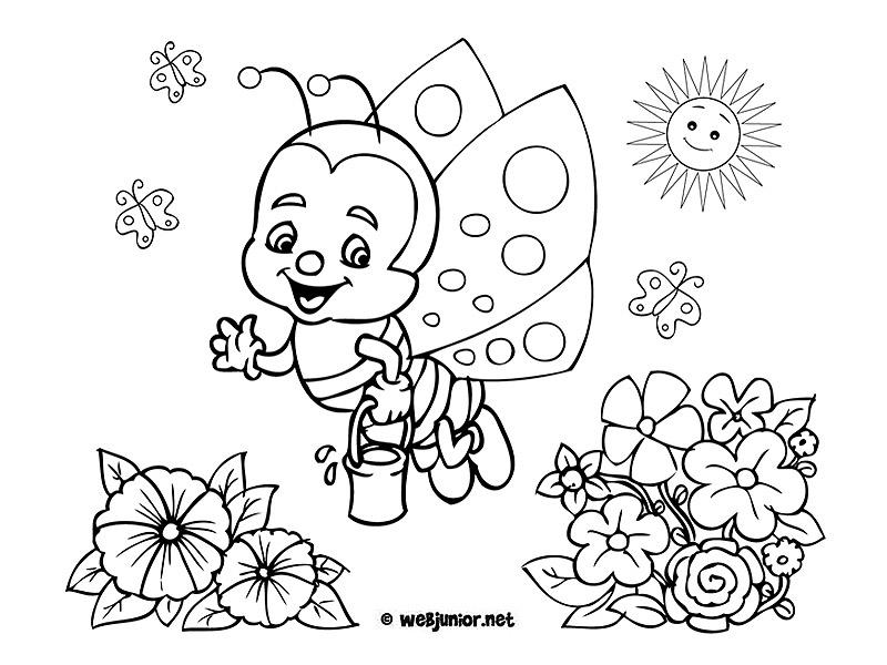 Petit Papillon Au Printemps Coloriage Animaux Gratuit Sur Webjunior