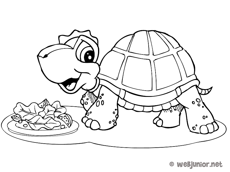 la tortue en plein d jeuner coloriage animaux gratuit sur webjunior. Black Bedroom Furniture Sets. Home Design Ideas