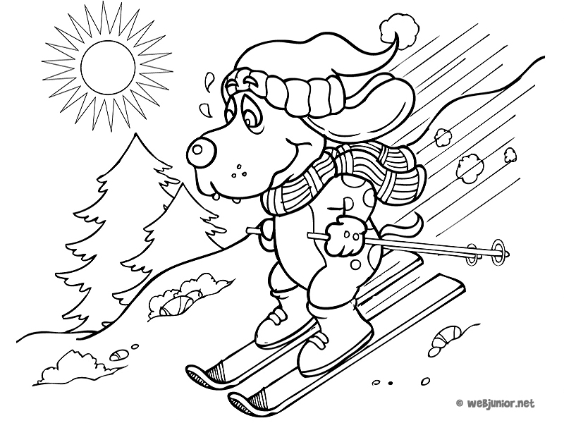 Un Chien Sur Des Skis : Coloriage Vacances Gratuit Sur Webjunior